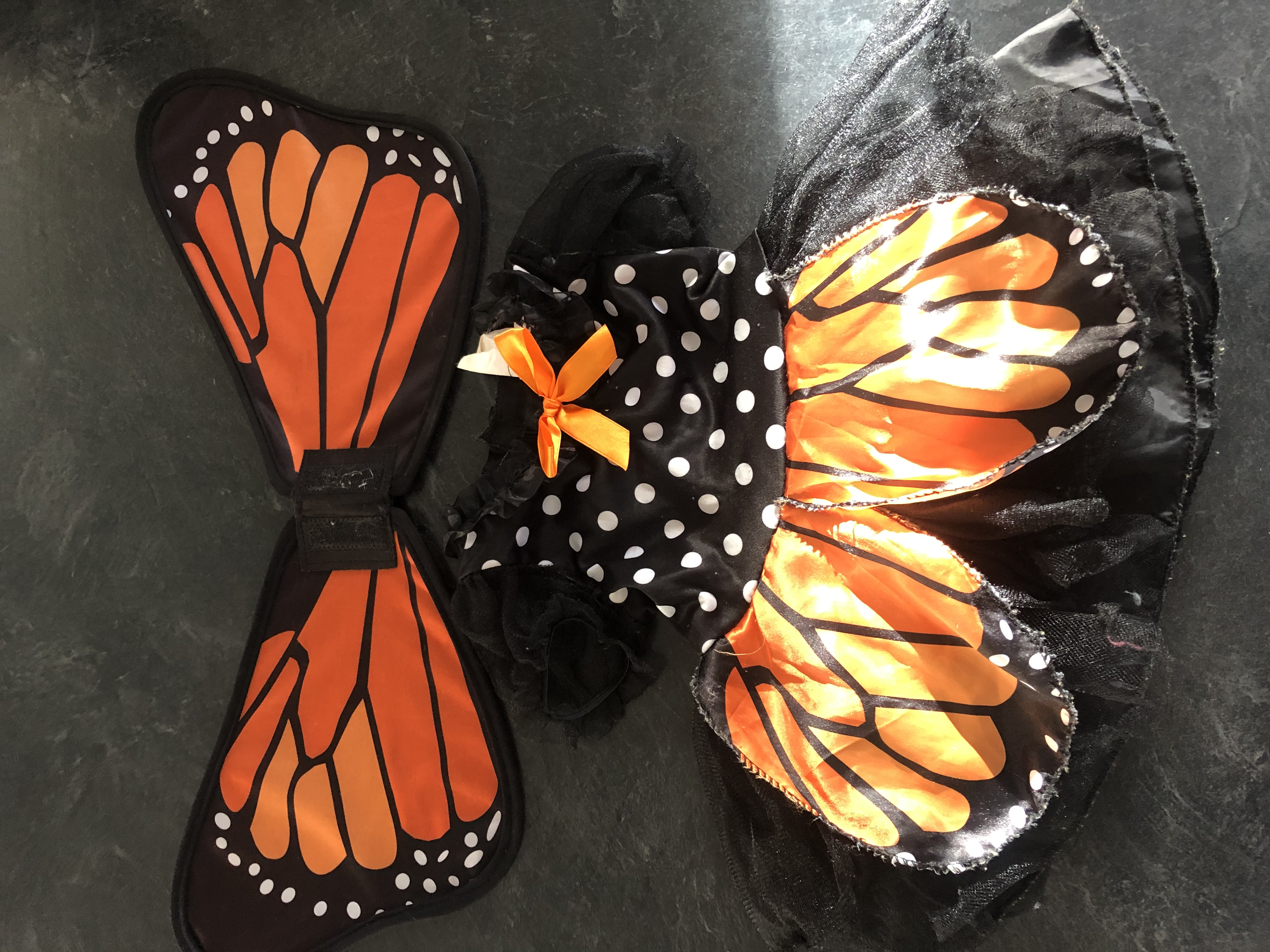 Butterfly (1-2 years)