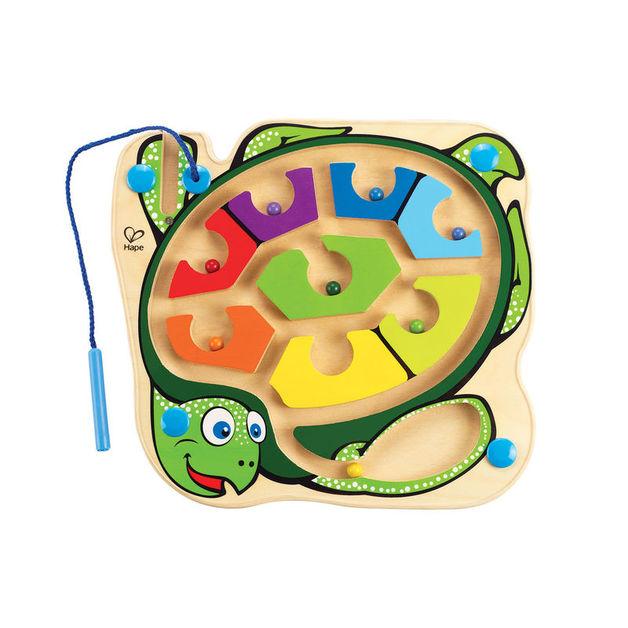 Colourback Sea Turtle
